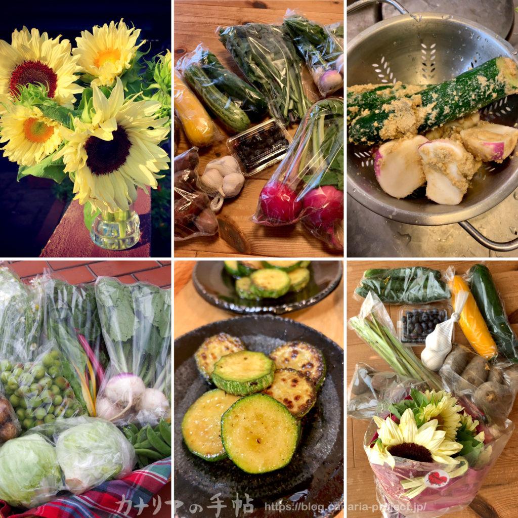 無農薬野菜と化学物質過敏症